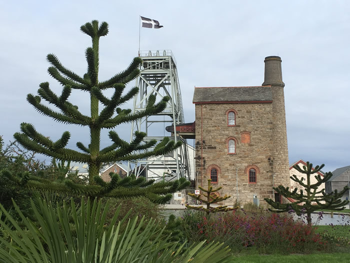 Cornish Ancestry and Cornish Mining Highlights tour with blue badge guide viv robinson