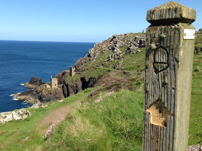 take a poldark tour with viv robinson blue badge registered tour guide