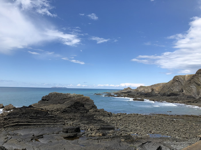 explore the north devon coast with blue badge guide viv robinson