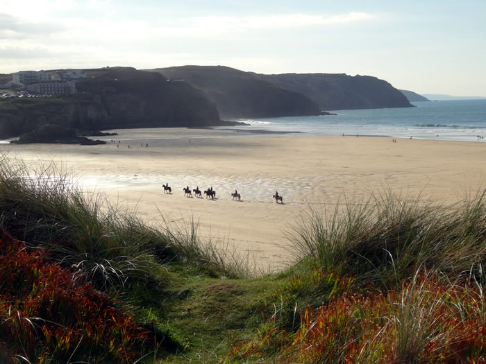 horses on perranporth beach, cornwall