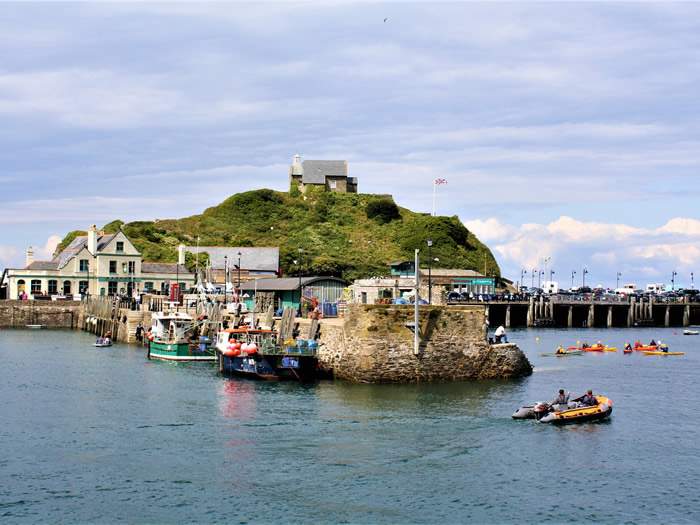 guided walks in ilfracombe, devon with viv robinson registered blue badge tour guide